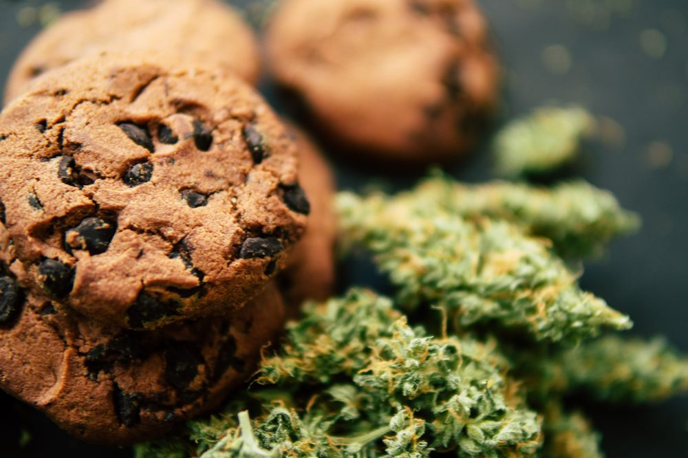 Cannabis cookies with chocolate chips close up along side cannabis bud