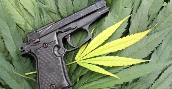 oklahoma gun laws represented by gun on cannabis leaves
