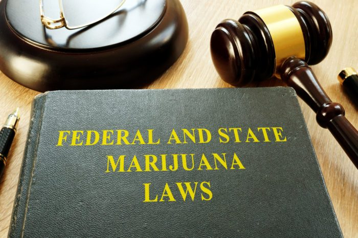 Decriminalization of Drugs represented by state and federal laws book next to gavel