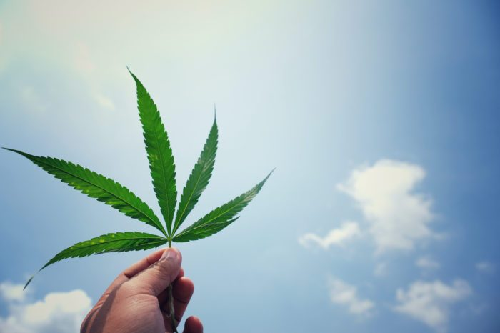 Could Rescheduling Cannabis Help Fight The Pandemic?