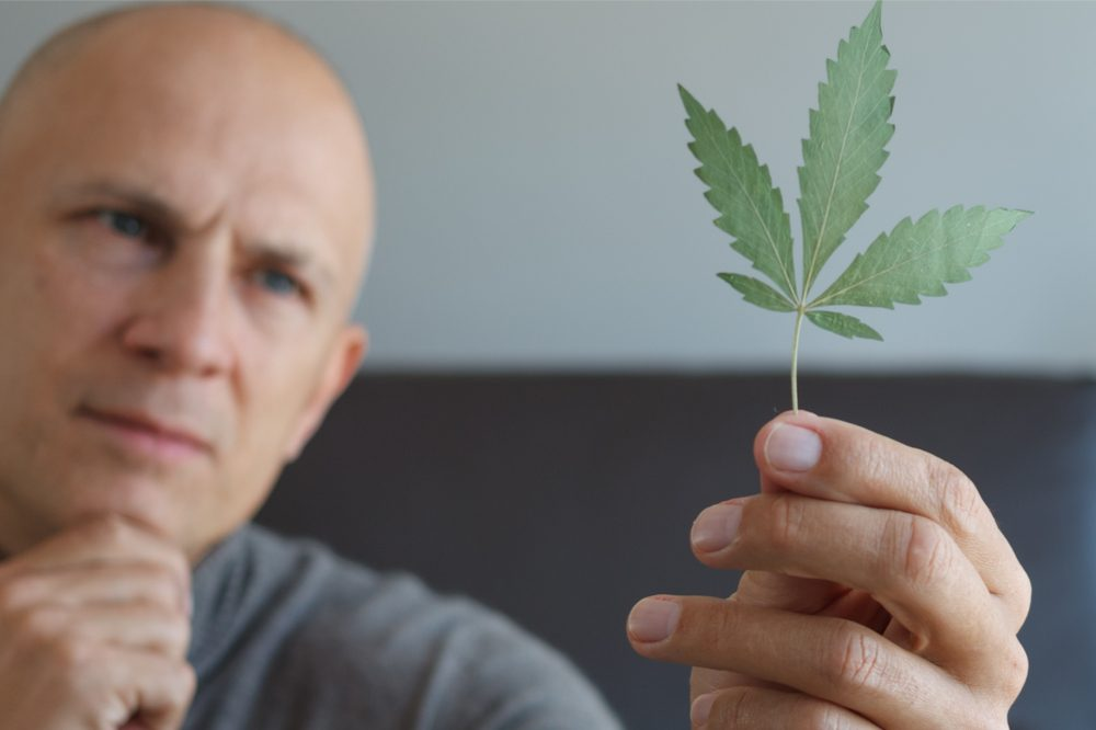 how does cbd affect the brain represented by man holding cannabis leaf