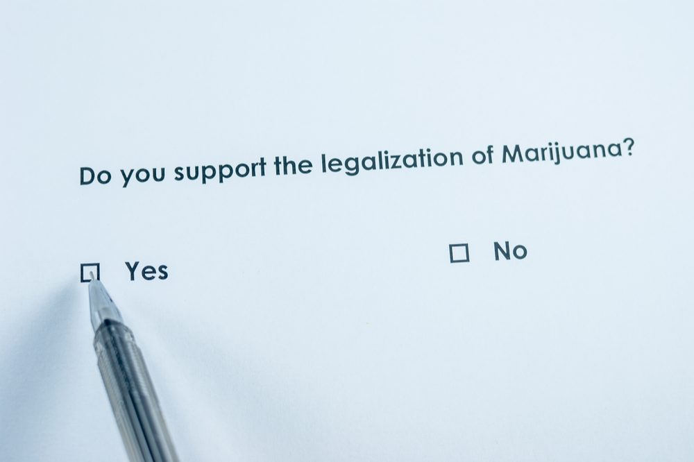 trump on cannabis represented by yes or no to legalization choice with pen