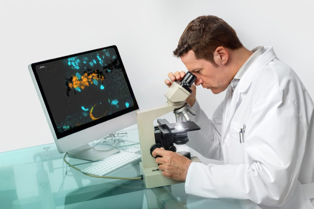 zebrafish and research represented by zebrafish scientist looking into microscope