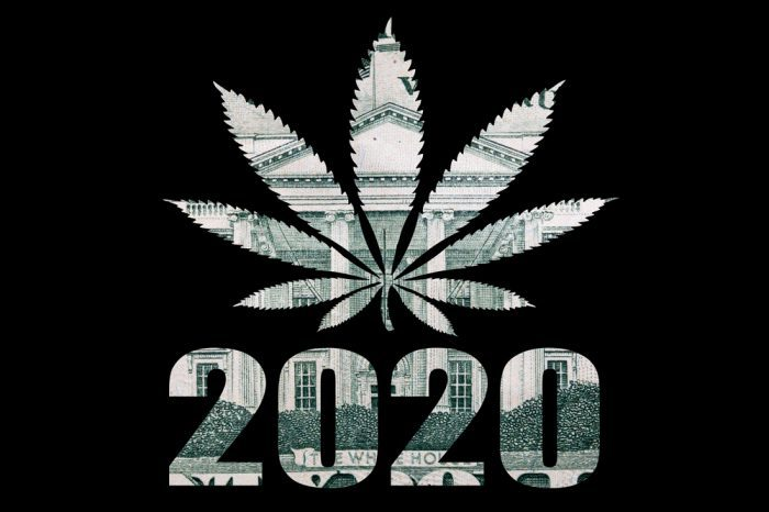 Election 2020 Legalized Cannabis and Magic Mushrooms in U.S. States