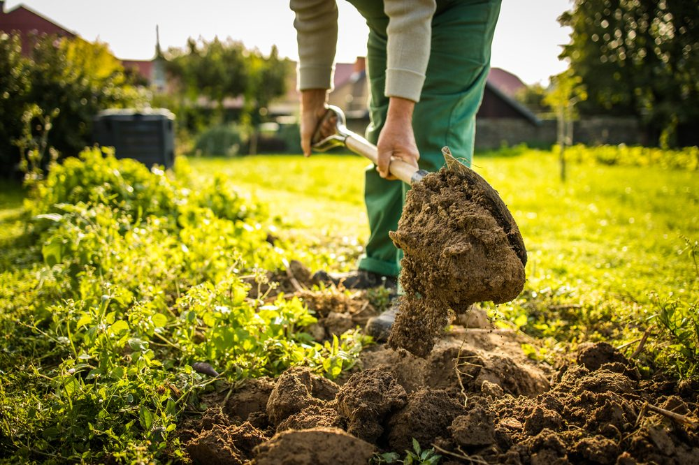 permaculture garden with man digging a hole