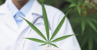cannabis for cancer represented by researcher holding sativa leaf